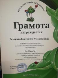 Краевой экологический конкурс «Зелёная упаковка»